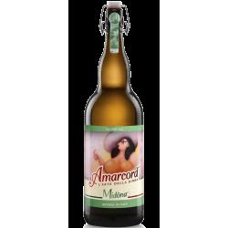 Amarcord - Midòna Bionda Doppio Malto MAGNUM 3 L