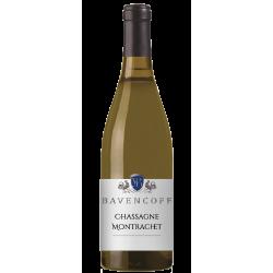Bavencoff - Chassagne Montrachet